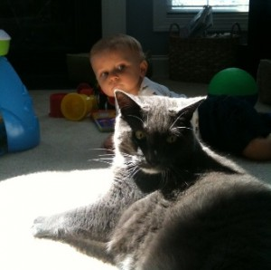 How do you prepare your child for pet loss?