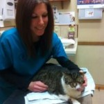 Dr. Heather Simon, VMD, examines Pudgie