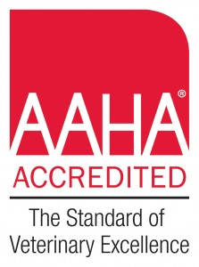 AAHA Accredited, The Standard of Veterinary Excellence