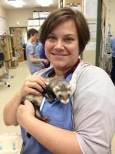 Dr. Kim Somjen, DVM, Belle Mead Animal Hospital, with ferret patient Madeline.