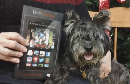 Max and Kindle Fire