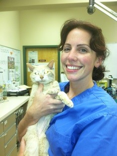 Dr. Rockhill with Cat patient