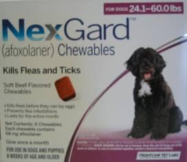 NexGard chewable for Dogs 24.1 to 60 lbs