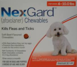 Nexgard A New Fda Approved Chewable To Combat Fleas And