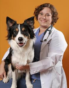 Dr. Kim Somjen, DVM, Belle Mead Animal Hospital