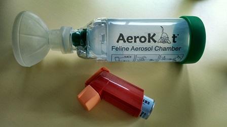 Aerokat Chamber and puffer