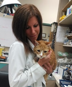 Dr. Heather Simon and cat patient Celtic