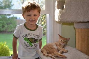 Henry and Lion the kitten
