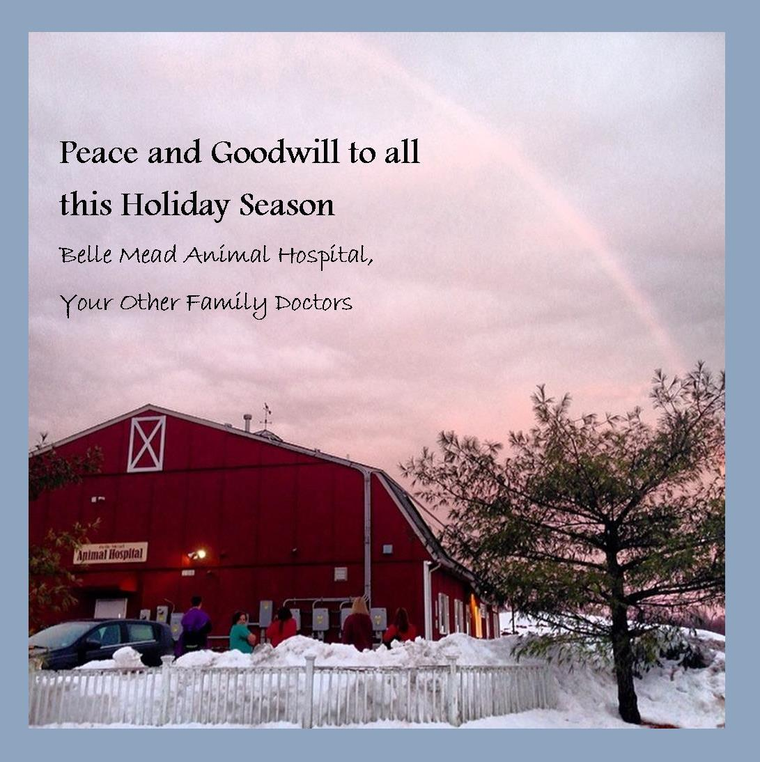 Holiday Greetings from Belle Mead Animal Hospital