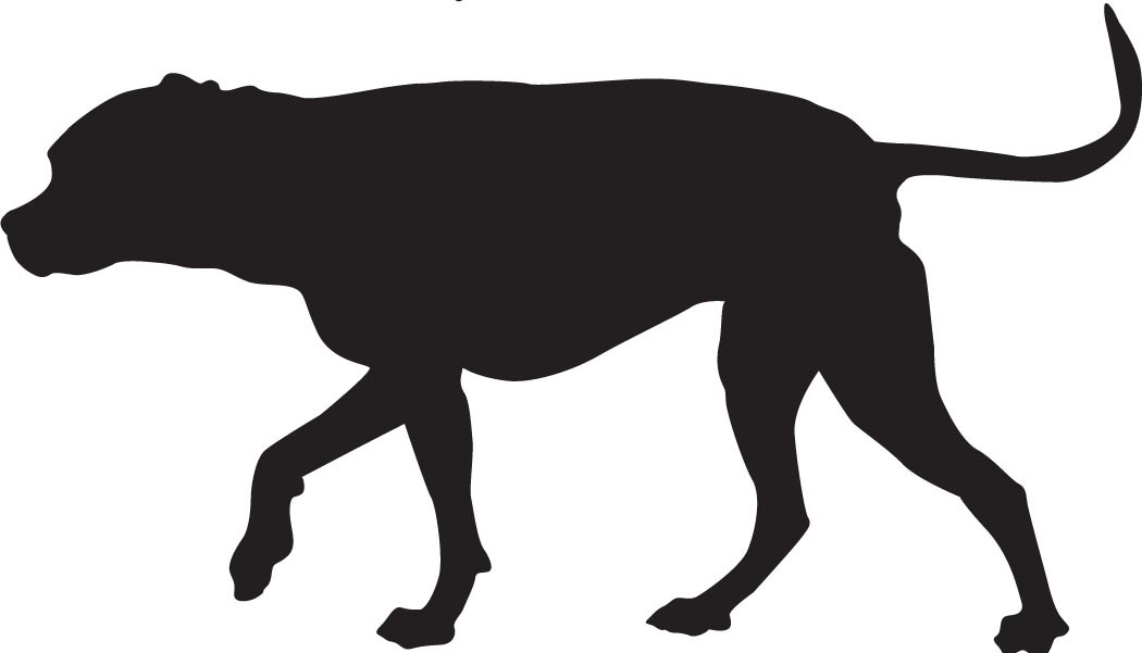 dogclip1