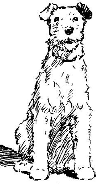 dogleft