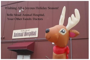 Holiday Greetings 2015 from Belle Mead Animal Hospital