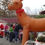 Belle Mead Animal Hospital 2015 Reindeer Event