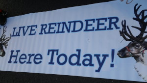 Live Reindeer Signage 2015 Belle Mead Animal Hospital