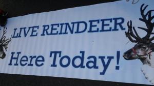 Live Reindeer Signage 2015 Belle Mead Animal Hospital