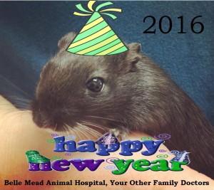 BMAH Happy New Year 2016