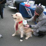 Hills Pet Nutrition at Belle Mead Animal Hospital Live Reindeer event