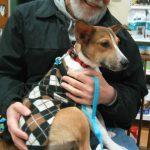 Animal Alliance of NJ adoptable puppy