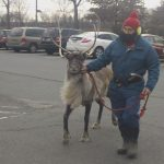 Reindeer Thunder enters with Yukon Cornelius