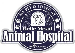 My Pet is Loved at Belle Mead Animal Hospital