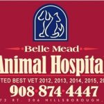 Belle Mead Animal Hospital Best Wins