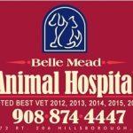 Belle Mead Animal Hospital Best Wins