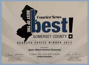 Courier News Best of Somerset County 2017 Belle Mead Animal Hospital