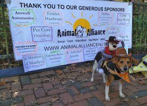Belle Mead Animal Hospital a Spnosor of Pet Masquerade