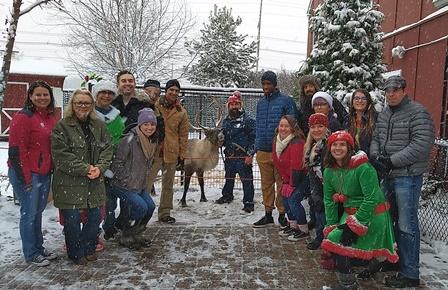 Belle Mead Animal Hospital Team Holiday Event 2017