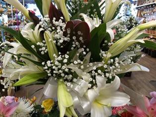 https://vetportal.vetsecure.com/email/1446/Lily_in_flower_arrangement.jpg