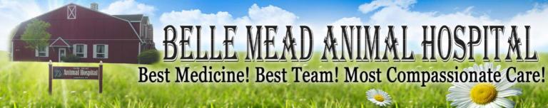 https://vetportal.vetsecure.com/email/1446/BMAH_Newsltr_Banner_Best_Medicine.png