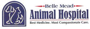 BMAH Best Medicine Logo